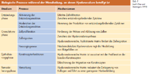 http://www.wundheilung.net/News/2006/HoppeHYAFF.pdf